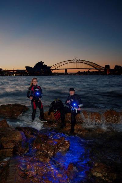Surfacing from a night dive in Sydney Harbour is as spectacular as exploring beneath it.Photo by Jason Ruth.