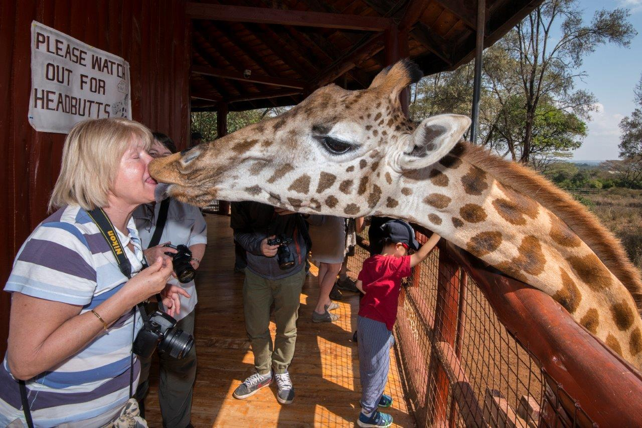 We didn't warn our group that a giraffe kiss was on the agenda but it wasn't long before they all lined up for one. Diana is clearly enjoying her first giraffe smooch!