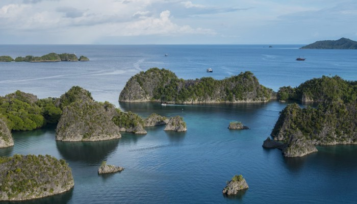 Raja Ampat is located in the approximate centre of a region referred to as `the coral triangle'. Encompassing both the Indian & Pacific oceans with Papua New Guinea & The Solomon's Islands to the East, Indonesia all the way to the West and the Philippine islands to the North more species of marinelife have evolved here than any other location in the World.